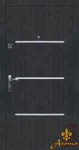 Двері з молдингом